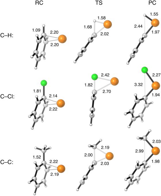 Arylic Cx Bond Activation By Palladium Catalysts Activation Strain