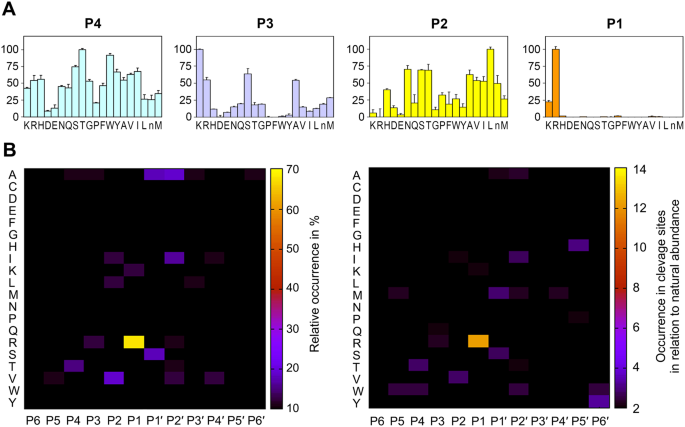Structural determinants of specificity and regulation of