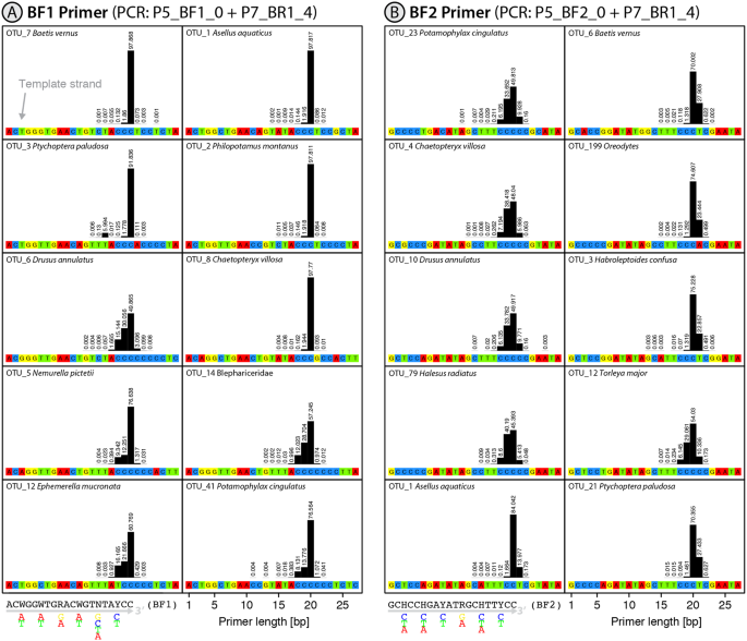Slippage of degenerate primers can cause variation in amplicon