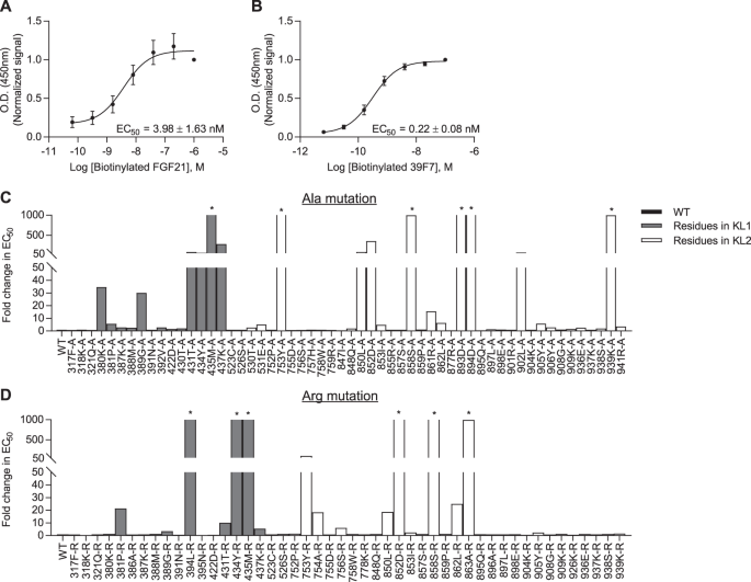 a systematic dissection of sequence elements determining β klotho