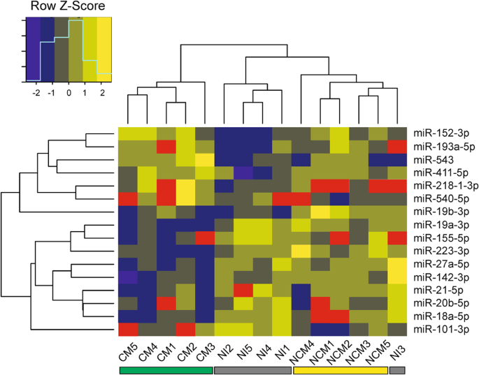 Differentially expressed microRNAs in experimental cerebral malaria ...