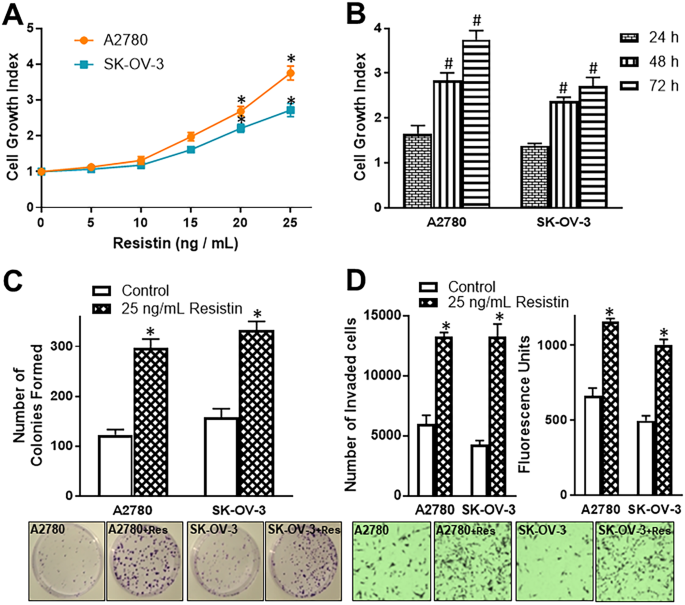 Novel Oncogenic And Chemoresistance Inducing Functions Of Resistin In Ovarian Cancer Cells Require Mirnas Mediated Induction Of Epithelial To Mesenchymal Transition Scientific Reports