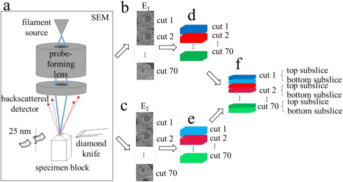 electron microprobe analysis basic principles