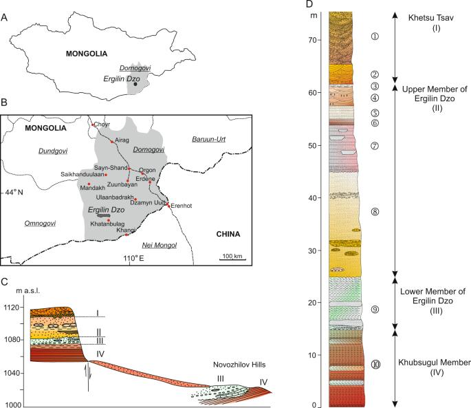 A new Eocene anagalid (Mammalia: Euarchontoglires) from Mongolia and ...