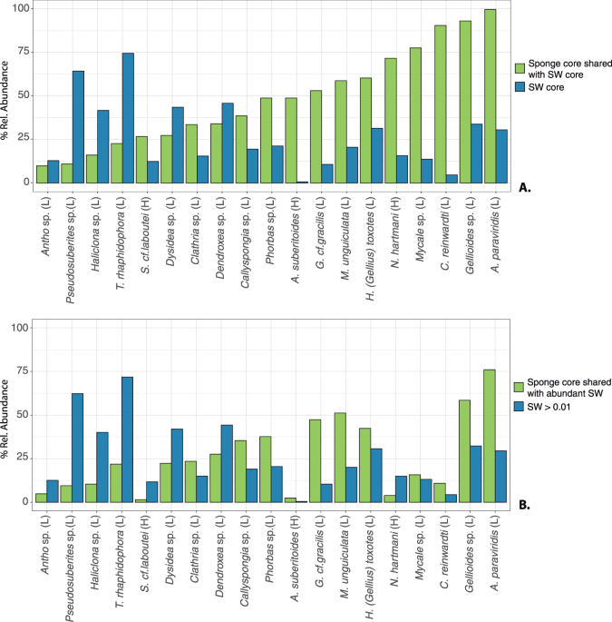 Showcasing the role of seawater in bacteria recruitment and microbiome stability in sponges