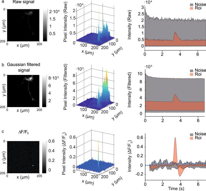 Partie b-datation radiométrique masteringbiology