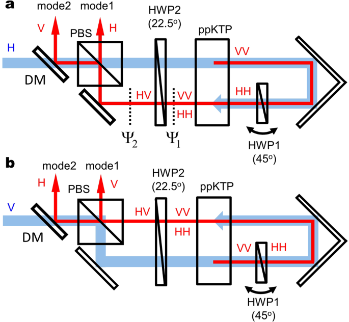 c69a76c24e Schematic of integrated double-pass polarization Sagnac interferometer for  (a) clockwise and (b) counterclockwise directions. The polarizing beam  splitter ...