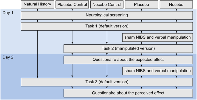 Evidence for Cognitive Placebo and Nocebo Effects in Healthy