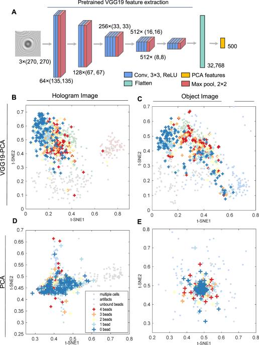 Deep transfer learning-based hologram classification for molecular diagnostics