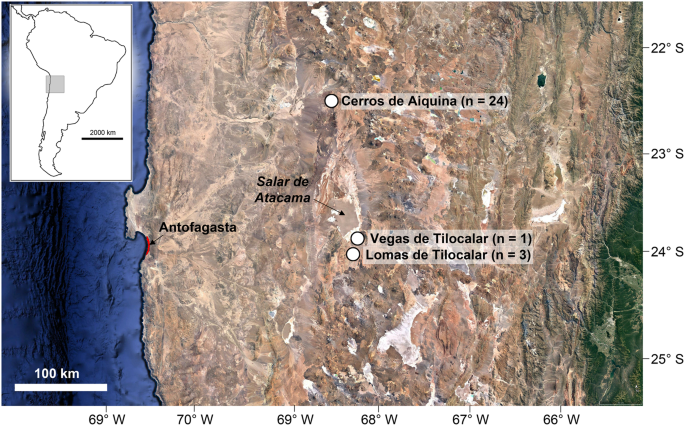 Plant pathogen responses to Late Pleistocene and Holocene climate change in the central Atacama Desert, Chile