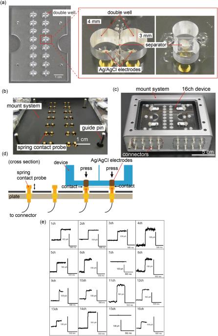 Electrophysiological measurement of ion channels on plasma
