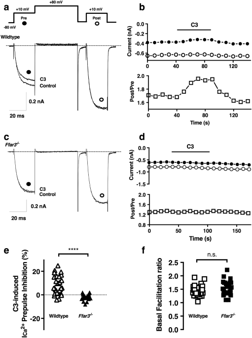 af30e9595c2 Sodium propionate-induced ICa2+ modulation in wild-type acutely dissociated  CSMG neurons with a loss-of-function in knockout mice. (a) Double-pulse  voltage ...