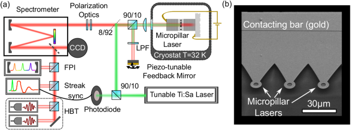 Quantum-dot micropillar lasers subject to coherent time