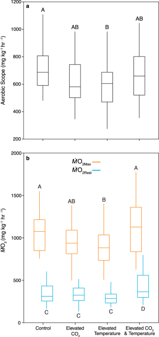 A negative correlation between behavioural and physiological performance under ocean acidification and warming