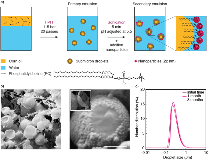 3D printing of sacrificial templates into hierarchical porous materials