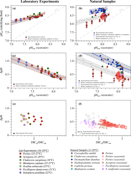 Seawater Temperature And Buffering Capacity Modulate Coral Calcifying Ph Scientific Reports