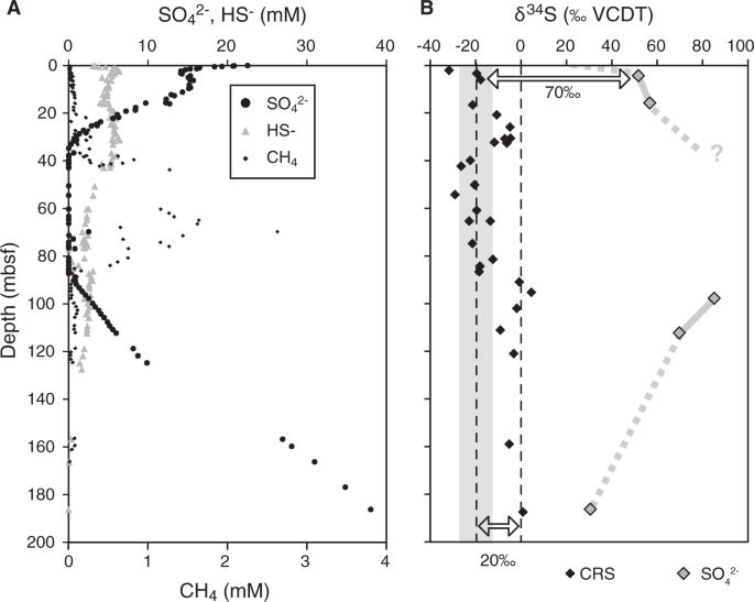 Sulphur and carbon isotopes as tracers of past sub-seafloor