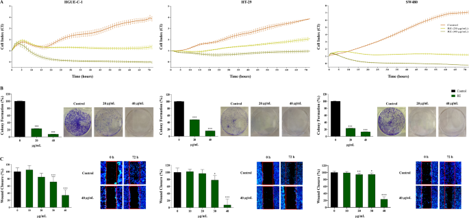 Rosemary Rosmarinus Officinalis Extract Causes Ros Induced Necrotic Cell Death And Inhibits Tumor Growth In Vivo Scientific Reports