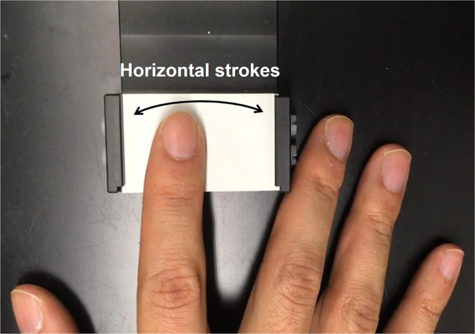 Shared neural representations of tactile roughness intensities by somatosensation and touch observation using an associative learning method