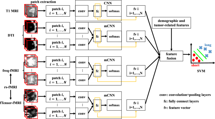 Multi-Channel 3D Deep Feature Learning for Survival Time