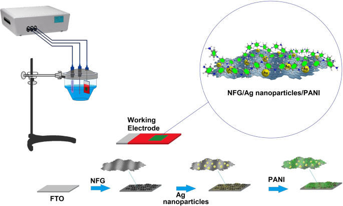 Sandwich-structured nanoparticles-grafted functionalized