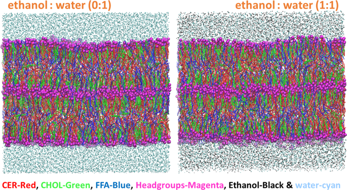 Effect of Chemical Permeation Enhancers on Skin Permeability