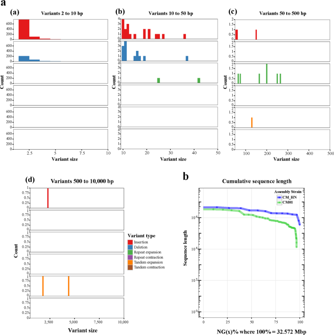 Study of the whole genome, methylome and transcriptome of <i>Cordyceps militaris</i>