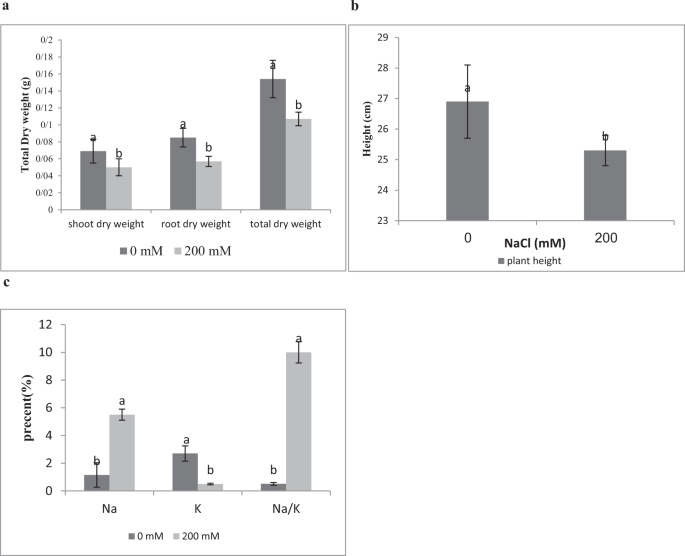 Transcriptional responses of wheat roots inoculated with