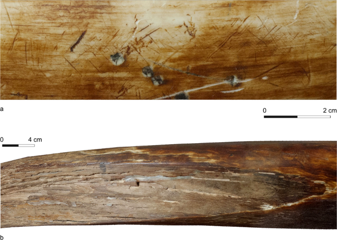Mammoth ivory was the most suitable osseous raw material for the production of Late Pleistocene big game projectile points