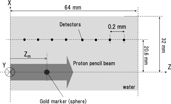a schematic figure of the simulation environment  the spherical gold marker  is placed in a water phantom at depth zm  detectors, marked with small  black