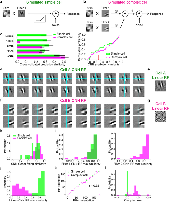 Characterisation of nonlinear receptive fields of visual neurons by convolutional neural network