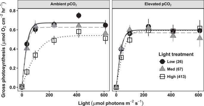 Contrasting responses of photosynthesis and photochemical efficiency to ocean acidification under different light environments in a calcifying alga