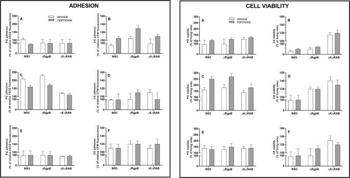 Adhesive protein-mediated cross-talk between Candida