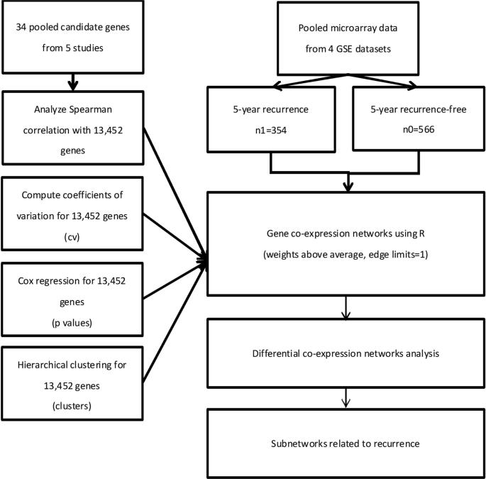 Six Novel Immunoglobulin Genes As Biomarkers For Better Prognosis In