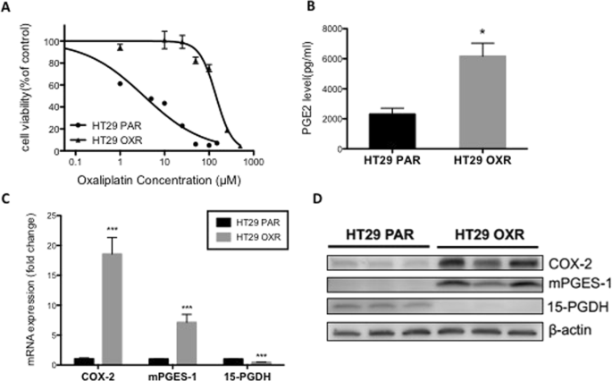 Inhibition Of Pge 2 Ep4 Receptor Signaling Enhances Oxaliplatin Efficacy In Resistant Colon Cancer Cells Through Modulation Of Oxidative Stress Scientific Reports