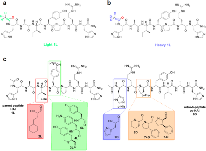 ab1e93eb57 The H2N-HAIYPRH-CONH2 peptide BBB shuttle (1 L)  (a) light and (b) heavy  versions containing an isotopically labeled acetyl moiety  and (c) the  library of ...