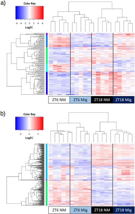Transcriptome Analyses of Heart and Liver Reveal Novel ...