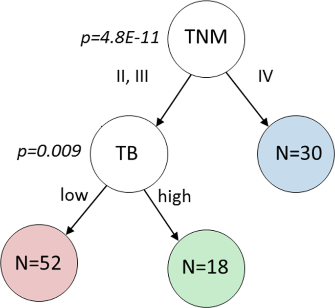 Automated tumour budding quantification by machine learning