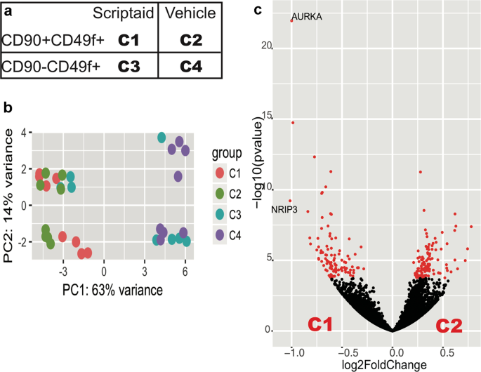 Single-cell assessment of transcriptome alterations induced by Scriptaid in early differentiated human haematopoietic progenitors during <i>ex vivo</i> expansion