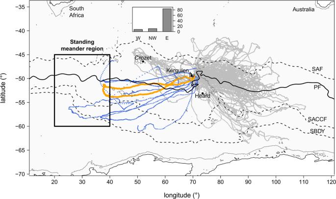 Submesoscale ocean fronts act as biological hotspot for