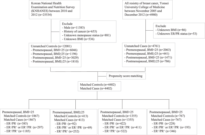 Association of white blood cell count with breast cancer burden varies  according to menopausal status, body mass index, and hormone receptor  status: a case-control study | Scientific Reports