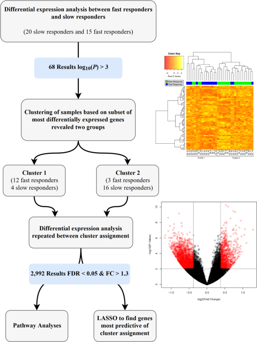 A molecular biomarker for prediction of clinical outcome in