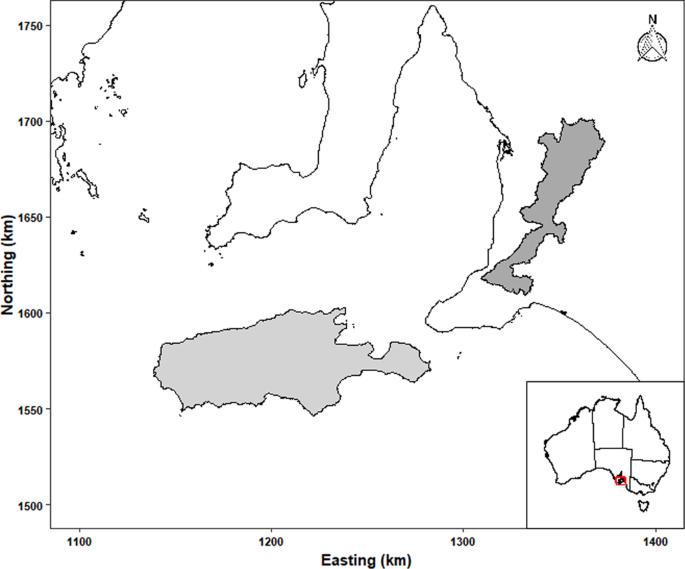 Map Of Australia 1700.Chlamydia Pecorum Prevalence In South Australian Koala