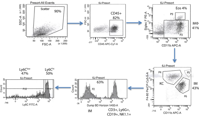 Multi-omics Analysis of Liver Infiltrating Macrophages Following Ethanol Consumption