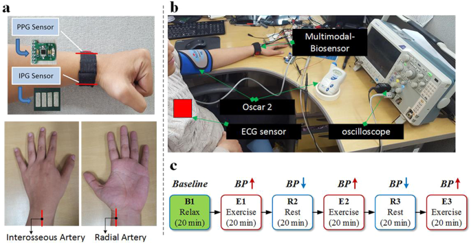 Multimodal Wrist Biosensor for Wearable Cuff-less Blood