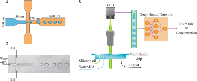 Learning from droplet flows in microfluidic channels using