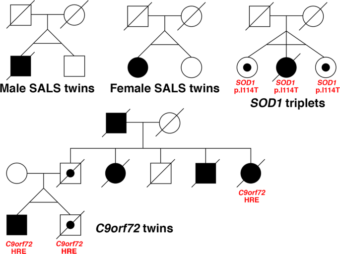 Monozygotic twins and triplets discordant for amyotrophic lateral sclerosis display differential methylation and gene expression