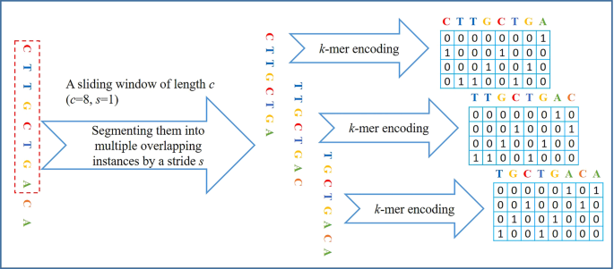 Modeling in-vivo protein-DNA binding by combining multiple-instance