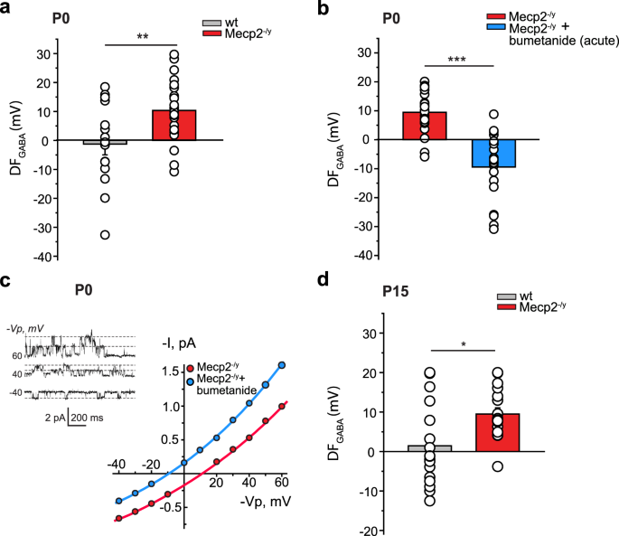 Early alterations in a mouse model of Rett syndrome: the