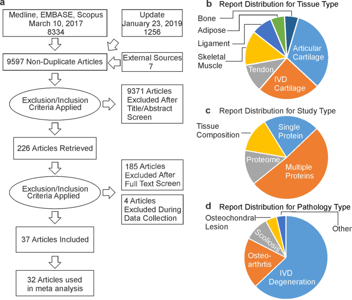 Extracellular Matrix Composition Of Connective Tissues A Systematic Review And Meta Analysis Scientific Reports